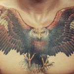 3_aigle_tatouage_photo_greg