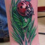 b921coccinelle_tatouage_photo_greg